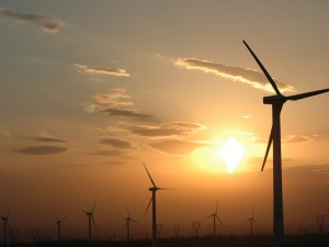 CCL statement on Clean Power Plan